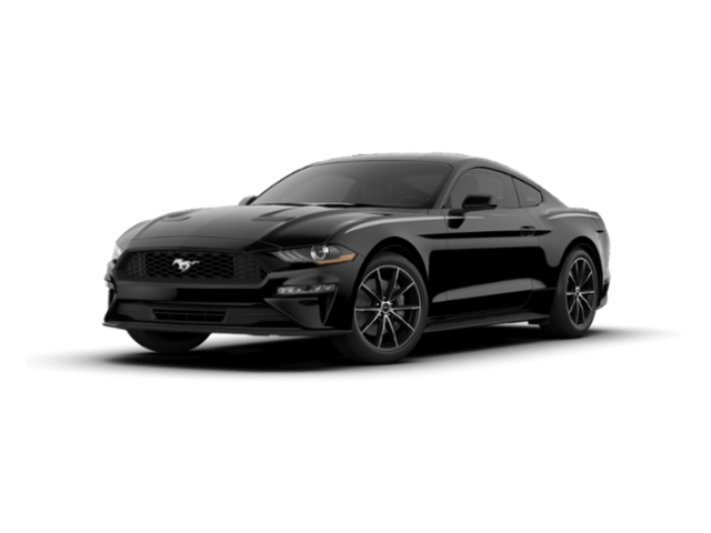 New 2019 Ford Mustang Ecoboost Coupe in Tyler, TX